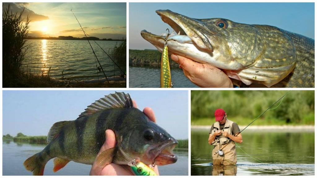 Плещеево озеро - отдых, рыбалка, месторасположение на карте